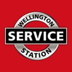 wss-logo_titleicon